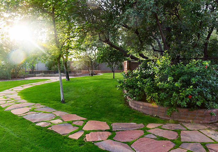 Let Tree Pros Irrigation Experts Help Create the Landscape You Deserve.